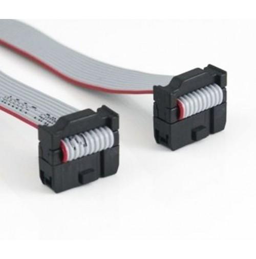 Cavo Piatto Flat Cable 3M 10 poli con 2 connettori femmina - lunghezza 30 cm