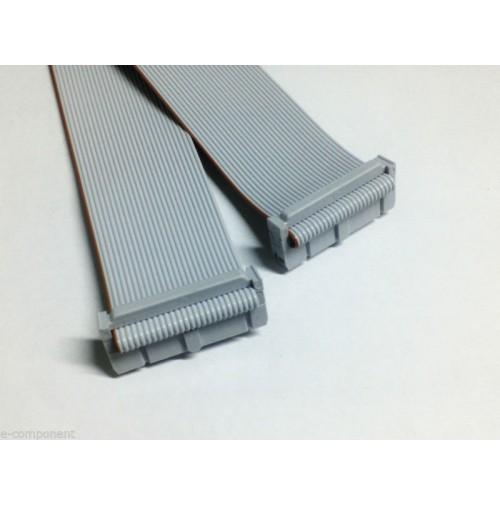 Cavo Piatto Flat Cable 3M 26 poli con 2 connettori femmina - lunghezza 100 cm