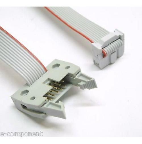 Cavo Prolunga Flat Cable 3M 10 poli con 2 connettori M-F - lunghezza 300 cm
