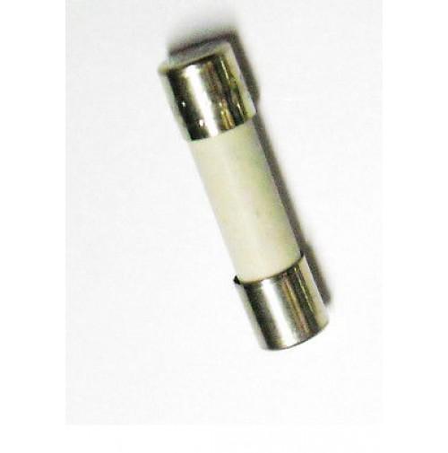 FUSIBILE CERAMICO DELAYED T10H 250V 5x20mm