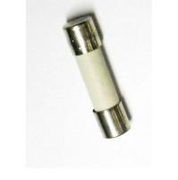 FUSIBILE CERAMICO DELAYED T2AH250V 5x20mm